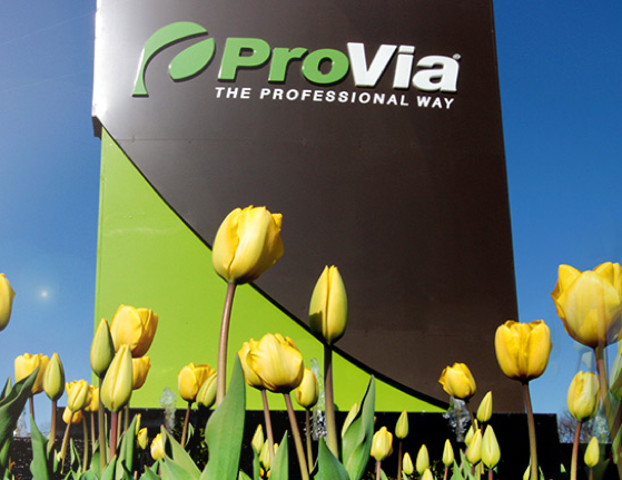 where are provia doors made, provia doors signet
